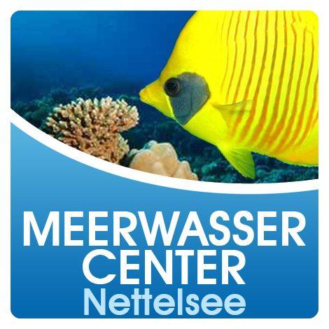 Meerwassercenter Nettelsee